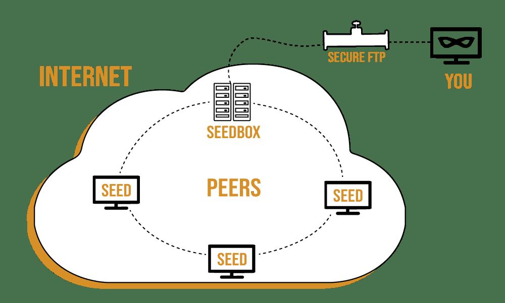 Seedbox and Plex Media Server.