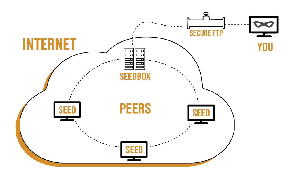 internet and seedbox