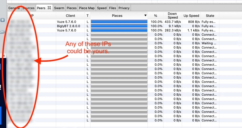 A torrent client leaks your IP address.